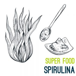 spiruline super aliment